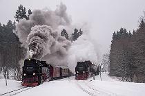 Harz HSB Güterzug Dampflok Tanasgo Eisenbahnreisen