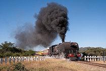 Bildergalerien Afrikareisen - Zimbabwe 2016 Tanago Eisenbahnreisen und Fotoreisen