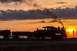 Bad Muskau März 2018 Tanago Eisenbahnreisen / Railfan Tours