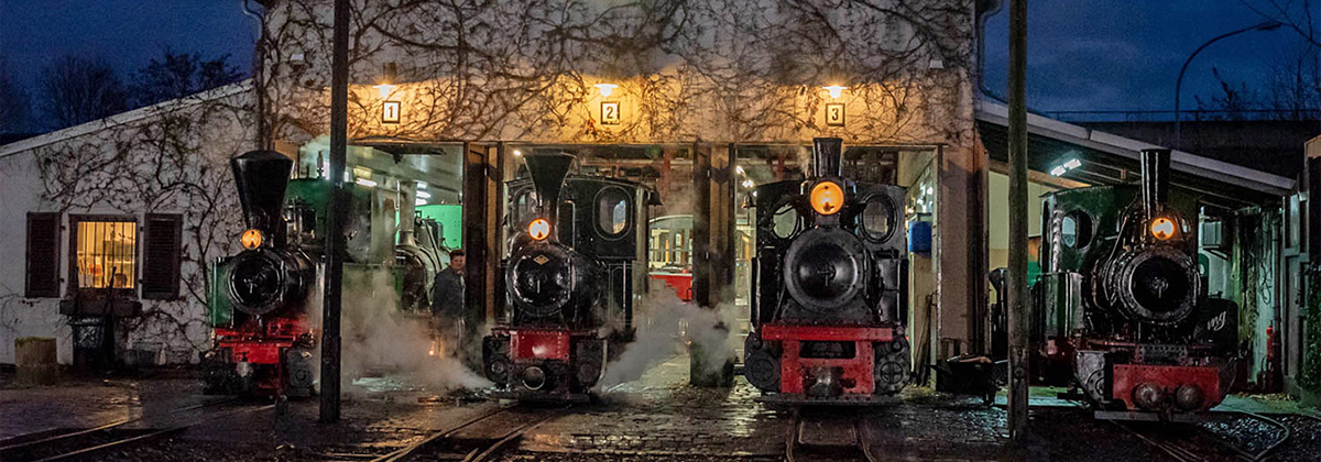 Döllnitzbahn Oschatz Mügeln IVk Tanago Eisenbahnriesen Erlebnisreisen