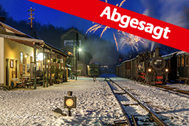 Austria Winter steam in the Steyr Valley 2021, Tanago Railfan tours photo charter